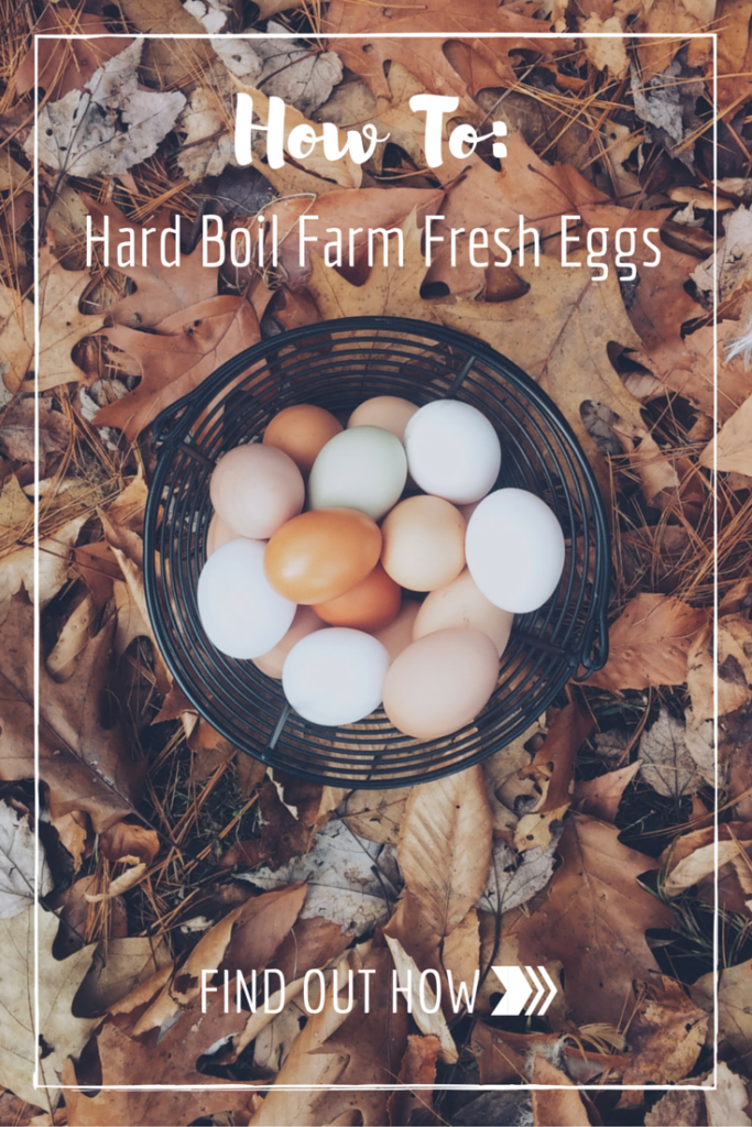 How To Boil Farm Fresh Eggs